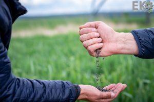 nawóz ekologiczny